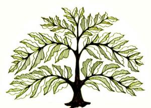zana-tree-edit